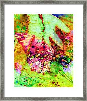 Butterfly That Was A Muscian Framed Print by David Mckinney