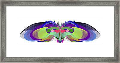 Butterfly - Ticker Symbol Csco Framed Print