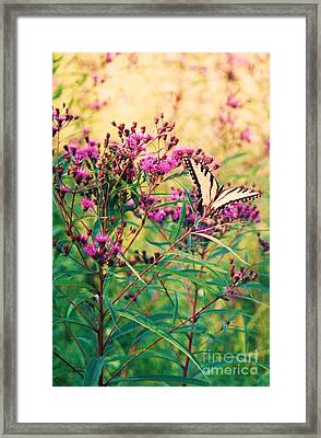 Framed Print featuring the painting Butterfly Wildflower by Eric  Schiabor