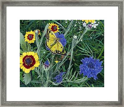 Butterfly Wildflowers Spring Time Garden Floral Oil Painting Green Yellow Framed Print by Walt Curlee