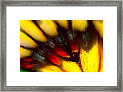 Butterfly Wing Pastel Framed Print