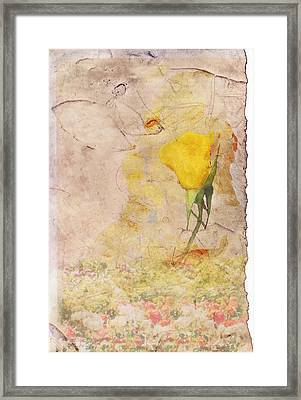 Butterfly Woman Framed Print by Juli Cromer