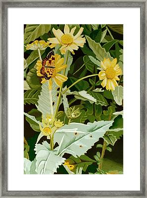 Butterfly Yellow  Framed Print by Tanya Provines