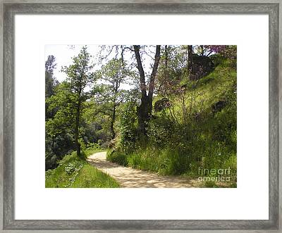 Buttermilk Trail South Yuba Framed Print