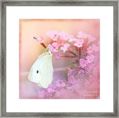 Butterrfly Joy Framed Print by Betty LaRue