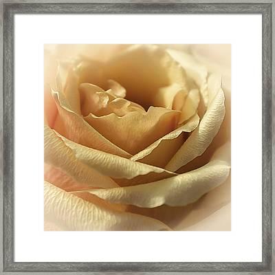 Butterscotch Sundae Framed Print by Darlene Kwiatkowski