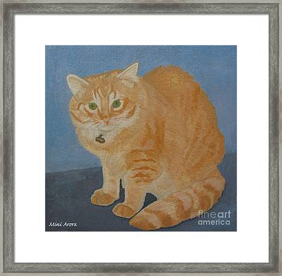 Butterscotch The Cat Framed Print