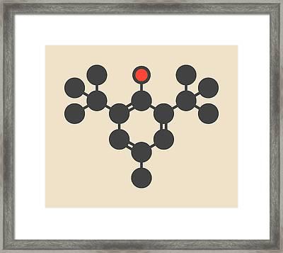 Butylated Hydroxytoluene Molecule Framed Print by Molekuul