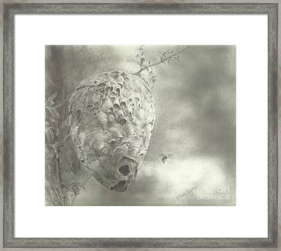 Buzz Off Framed Print by Mary Lynne Powers