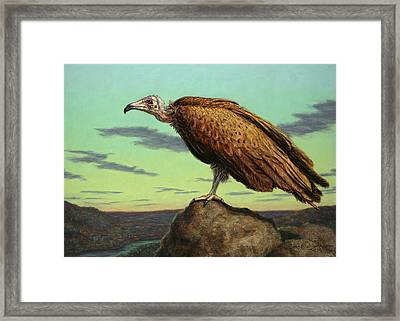 Buzzard Rock Framed Print by James W Johnson