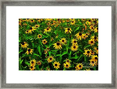 Buzzing Black Eyes Framed Print