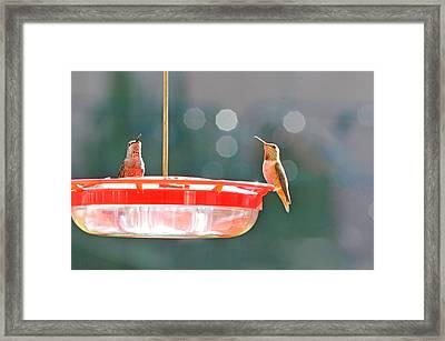 Buzzing Overhead Framed Print by Lynn Bauer