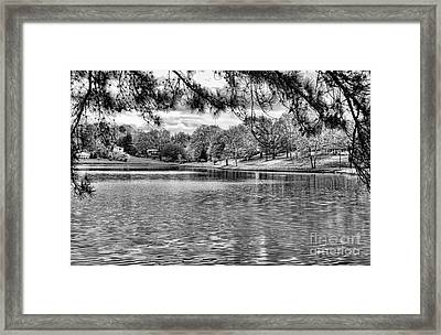 Bw Lake Views  Framed Print by Chuck Kuhn