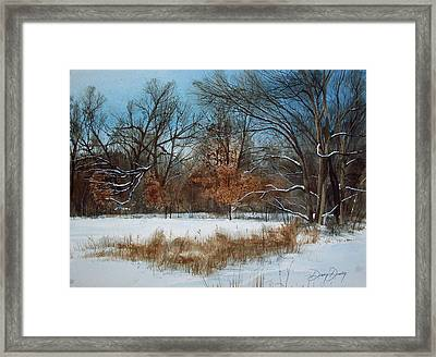 By Rattlesnake Creek Framed Print by Denny Dowdy