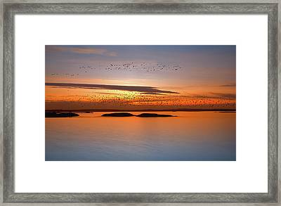 By Sunset Framed Print