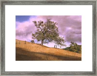 By The Big Oak Framed Print by Tom Wooldridge