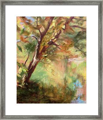 By The Greenway In Autumn- Along The Roanoke River Framed Print