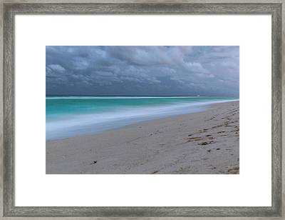 By The Pale Moonlight - Version Framed Print by Dan Vidal