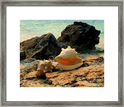 By The Sea Framed Print by Karen Wiles