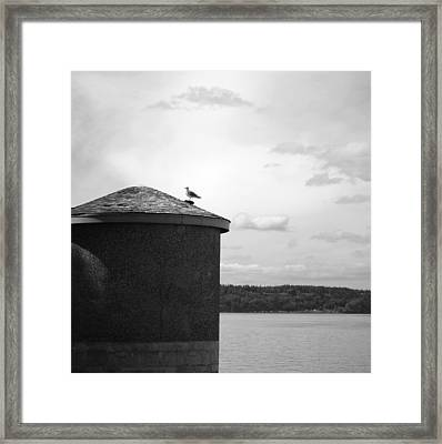 Framed Print featuring the photograph By The Water by Kjirsten Collier