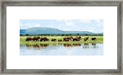 By The Water Panoramic  Framed Print by Stephanie Frankle