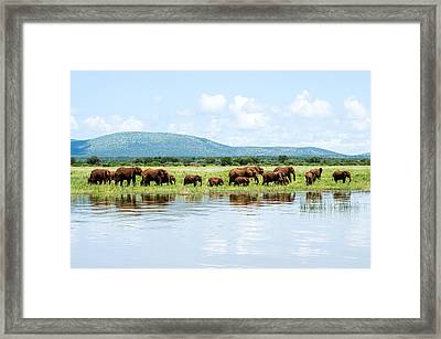 By The Water Framed Print by Stephanie Frankle