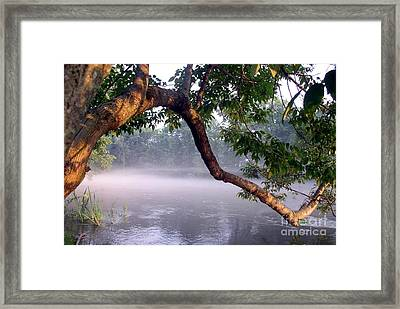 By The Water's Edge Framed Print by Mary Lou Chmura