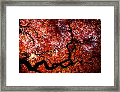 By Your Grace Framed Print