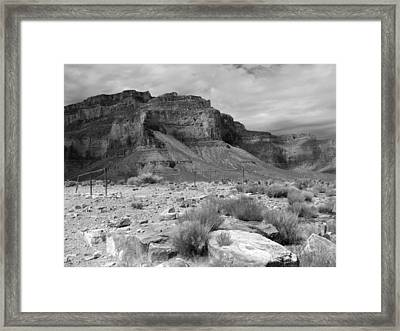 Bygone Days Of Mules Framed Print