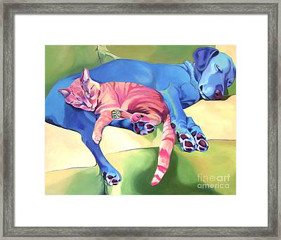 Byrd And Stealth Framed Print