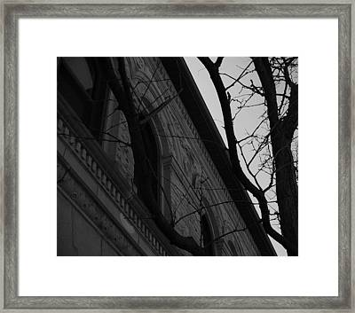 Bystander Perspective Framed Print