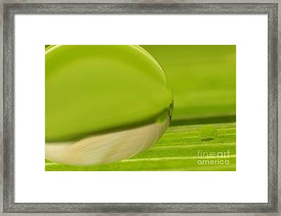 C Ribet Orbscape 0350 Framed Print by C Ribet