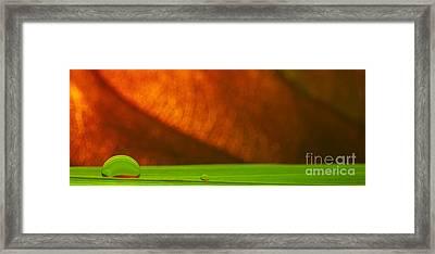 C Ribet Orbscape 1408ca Framed Print