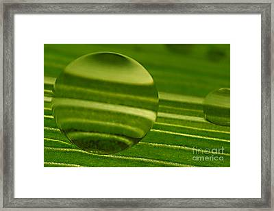 C Ribet Orbscape Green Jupiter Framed Print