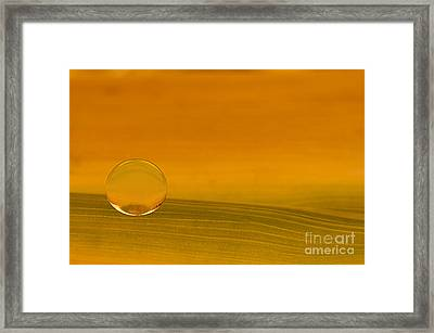 C Ribet Orbscape The Painted Heavens Framed Print by C Ribet