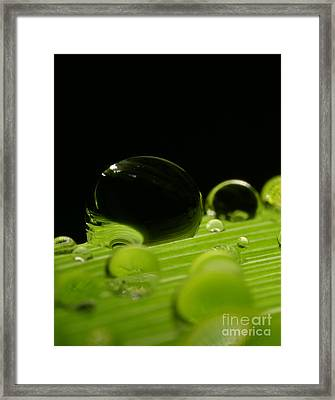 C Ribet Orbscape Water Soul Framed Print by C Ribet