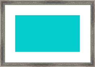 C.1.0-204-204.7x4 Framed Print