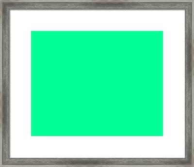 C.1.0-255-150.5x4 Framed Print