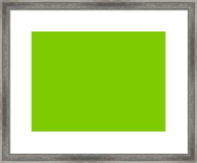 C.1.124-204-0.4x3 Framed Print