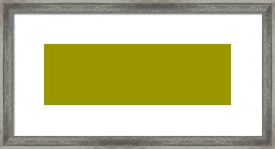 C.1.153-150-0.3x1 Framed Print by Gareth Lewis