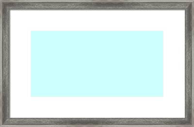 C.1.204-255-255.2x1 Framed Print