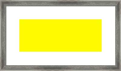 C.1.255-250-0.5x2 Framed Print
