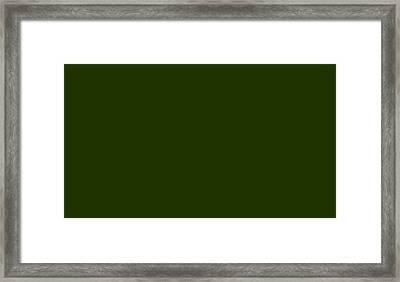 C.1.31-51-0.7x4 Framed Print