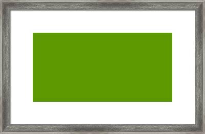 C.1.93-153-0.2x1 Framed Print