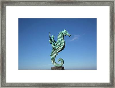'caballero Del Mar' (the Seahorse Framed Print