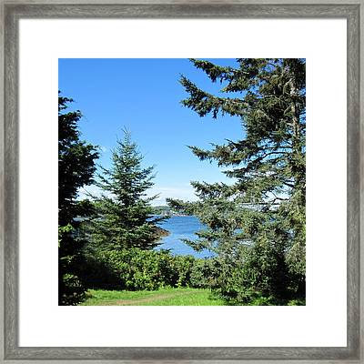 Cabbage Island Framed Print