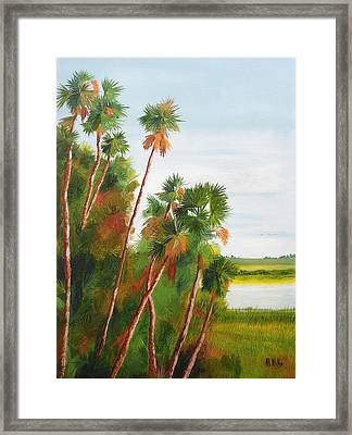 Cabbage Palms Framed Print