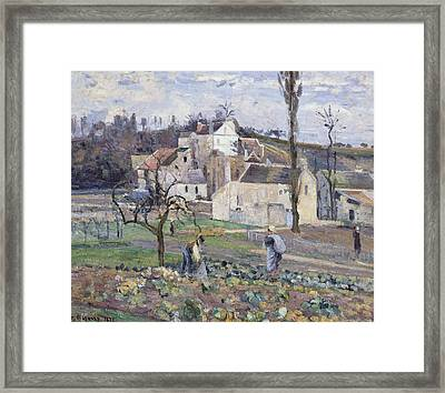 Cabbage Patch Near The Village Framed Print by Camille Pissarro