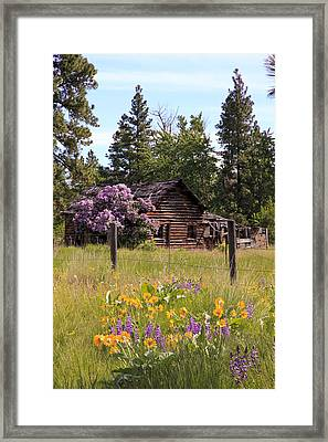 Cabin And Wildflowers Framed Print by Athena Mckinzie