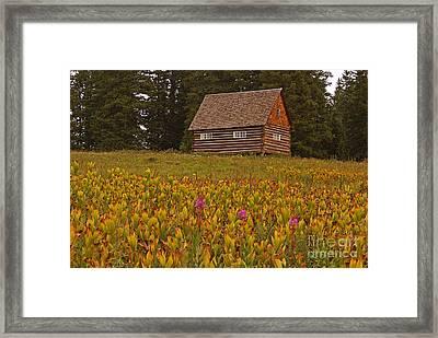 Cabin On Grand Mesa Framed Print